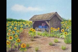 Tuttle Sunflower Farm, Sea Grape Gallery