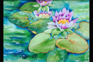 Stramara Water Lilies, Sea Grape Gallery