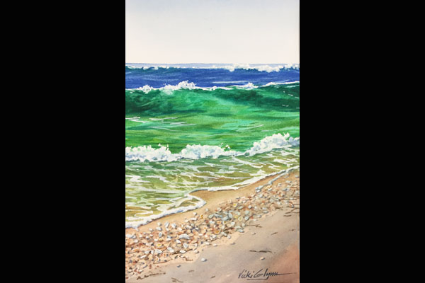 Glynn Surf and Shells, Sea Grape Gallery