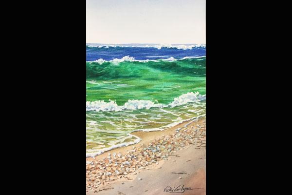 Glynn Surf and Shells, Sea Grape Gallery