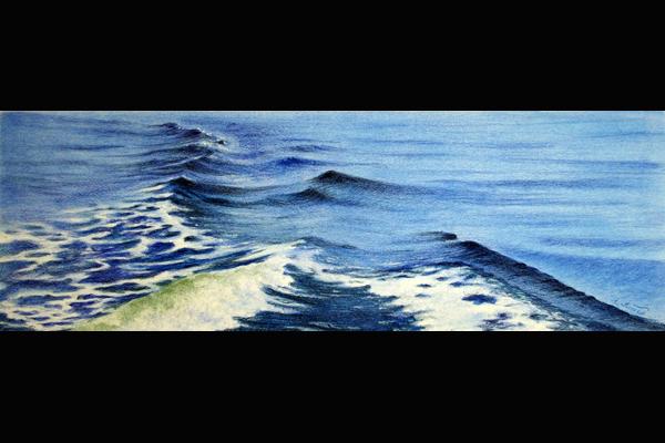 Tuttle Portside Wake, Sea Grape Gallery