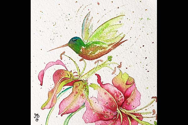 Stramara Hummingbird & Lilies, Sea Grape Gallery