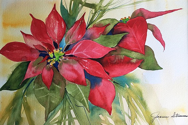 Stramara Poinsettia, Sea Grape Gallery