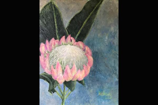 Krasny, Protea, 16 x 20, Sea Grape Gallery