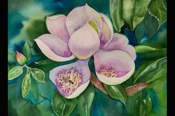 Stramara Florida Magnolia, Sea Grape Gallery, watercolor, 16 x 20