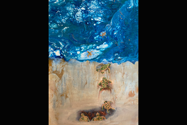 Stramara Turtle Season in Florida, Sea Grape Gallery, Mixed Media, 18 x 36