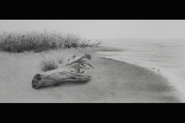 Anne Tuttle, Beach Walk, Graphite & Carbon, 16x10 framed, Sea Grape Gallery