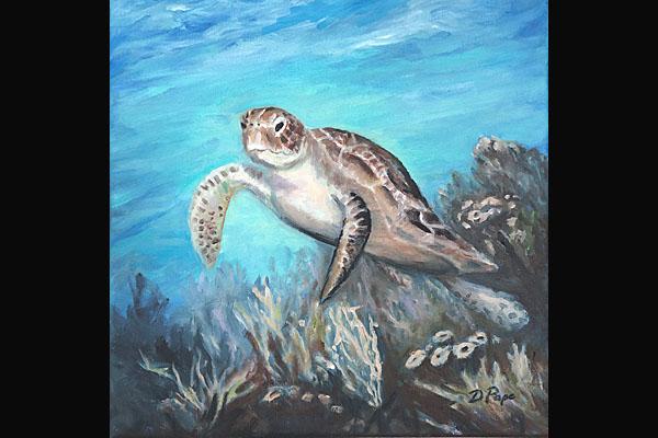 Donna Pape, Turtle, Sea Grape Gallery